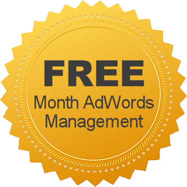 Free AdWords Account Management Offer